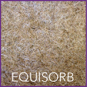 equisorb-shavings